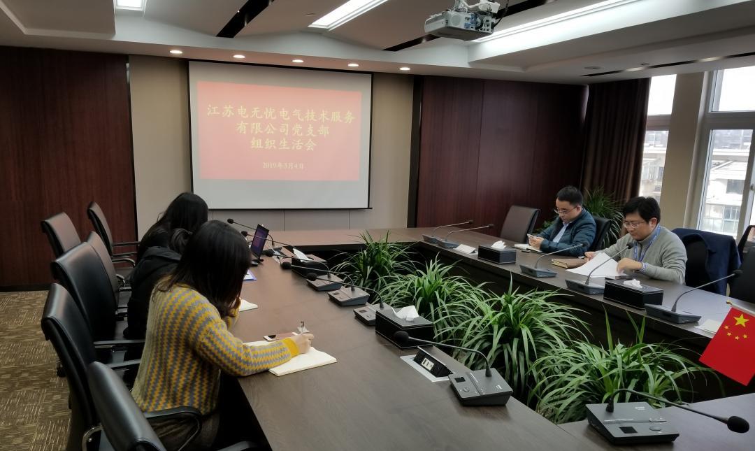 江苏电无忧党支部开展组织生活会和民主评议党员会议